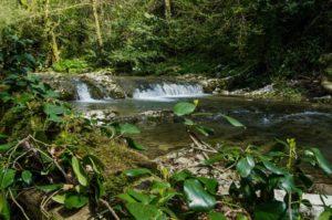 Пороги Агурского водопада